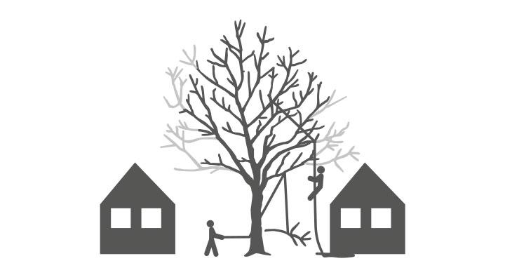 Odense_Beskæring_af_træer